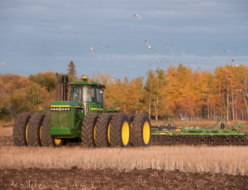 Fall Seedbed Preparation